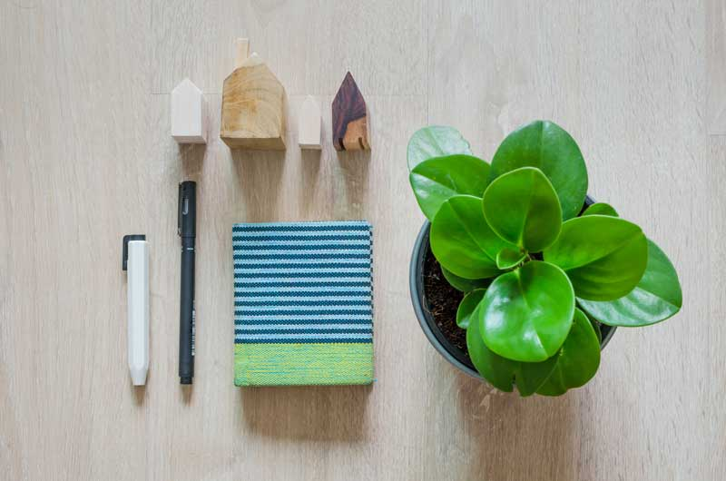 3 Must-Have Home Organization Tools!